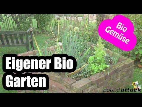 Obst Und Gemüse Anbauen Im Eigenen Garten | Bio Gemüse - Bio Obst ... Selbstversorger Garten Anlegen Obst Gemuse