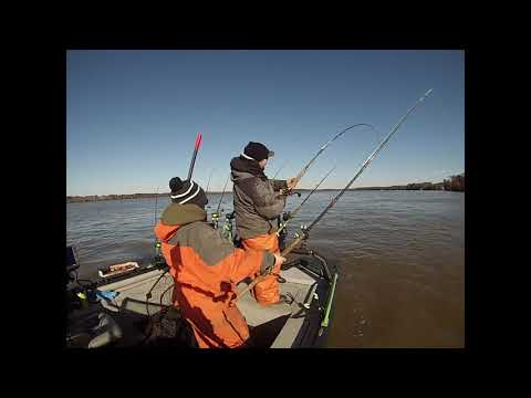 A Day Catfishing The James River!