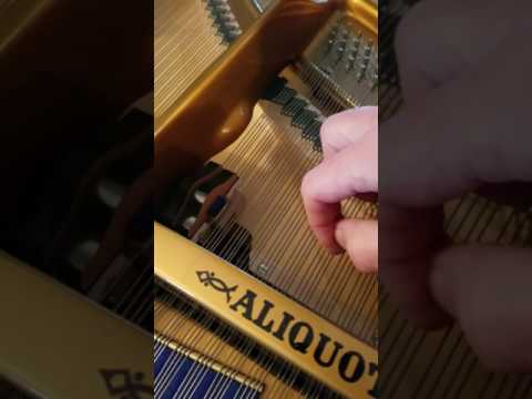Tuning of the Bluthner aliquot string