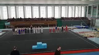 Соревнования спортивная гимнастика  3 разряд Арефьев Егор(7)