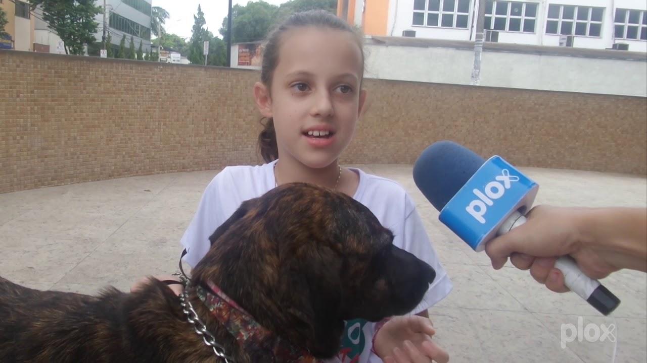 ONG realiza mais uma feira de adoção de animais em Ipatinga