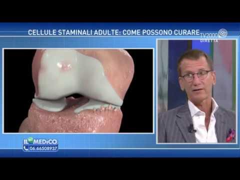 Le Malattie reumatiche o Reumatismi: Malattie delle ossa e delle articolazioni ma non solo!