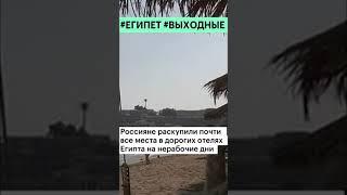 Россияне выкупили практически все места в дорогих отелях Египта shorts
