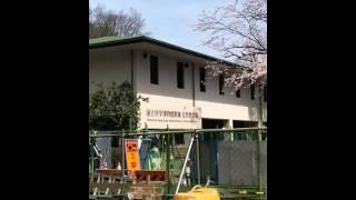 東京都庭園美術館 旧朝香宮邸