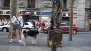 Husky and Living Statues on Rambla.wmv