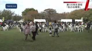 足立区の都市農業公園では毎年恒例の「秋の収穫祭」が開かれ、家族連れ...