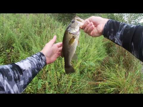 Bass Fishing Young Lake On Ft. Bragg, NC!!