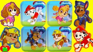 Paw Patrol Surprise Tins