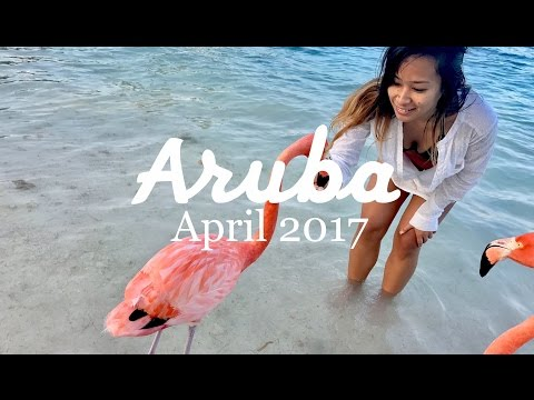 Adventures In The Happiest Place On Earth (Aruba 2017)