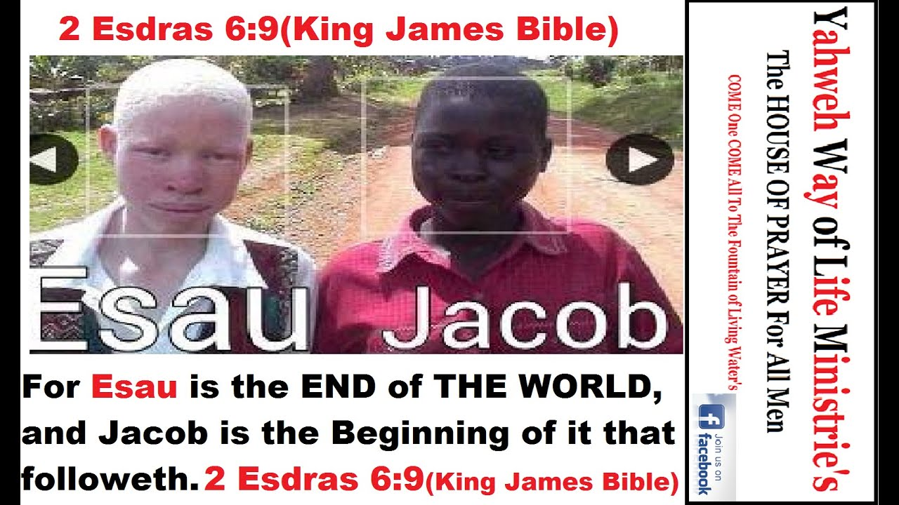 jacob and esau biblical hebrew fraternal twins preordained to be