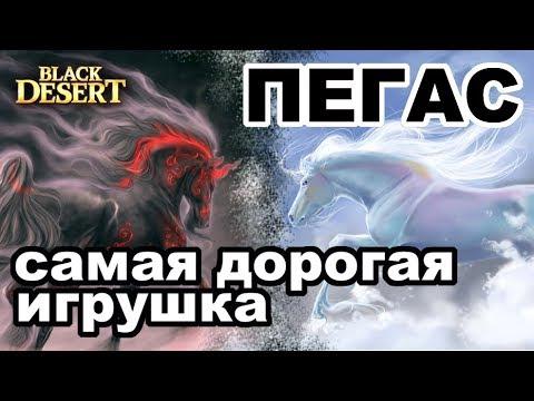 Black Desert (MMORPG - ИГРЫ) - 🐴 Пегас за 4ккк 🐴 Моя история пробуждения в BDO