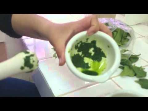 functec 2015 extracción de colorantes vegetales a partir de