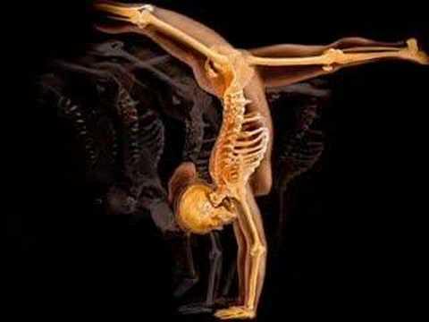 Anatomia e Arte - YouTube