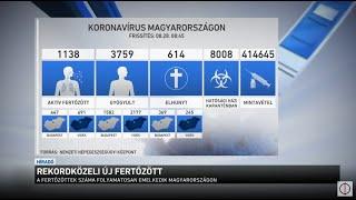tisztítás a paraziták ellen Voronezsban)