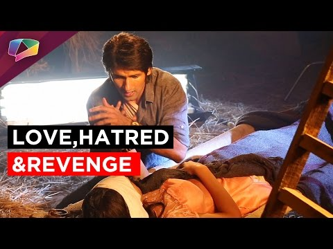 Raja-Ranis Love-Hate-Relationship