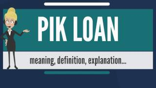 What is PIK LOAN? What does PIK LOAN mean? PIK LOAN meaning, definition & explanation