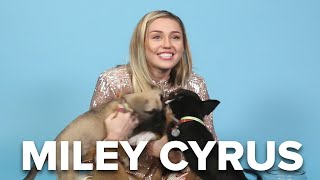 Miley Cyrus Plays With Puppies (While Answering Fan Questions)