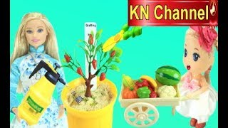 Đồ chơi trẻ em TRỒNG CÂY THẦN KỲ | BÀI HỌC CUỘC SỐNG KN Channel