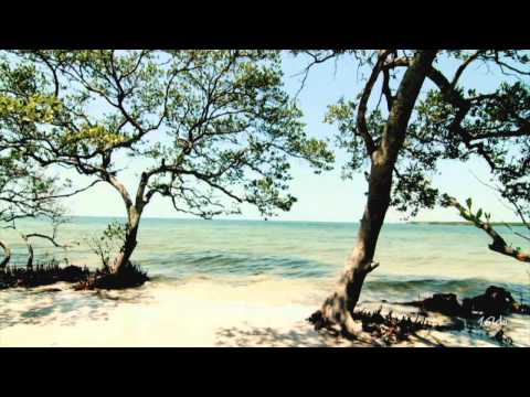 Simon O'Shine - Enthusiasm (Original Mix) [Music Video] [Defcon]