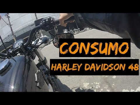 CONSUMO HARLEY DAVIDSON 48 FORTY EIGHT