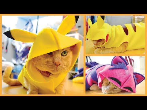 Thumbnail for Cat Video DIY Cat & Dog Clothes - Pikachu, Hoodies & More!