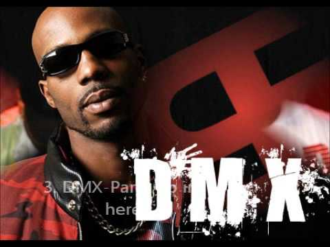 Top 5 DMX Sgs