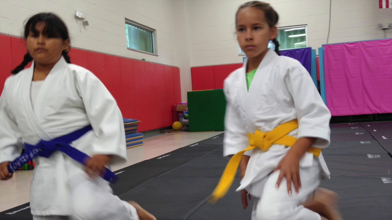 Cape Coral Aikido July 2019 – aikido