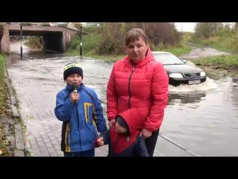 Мамоново плывёт под мостом дороги