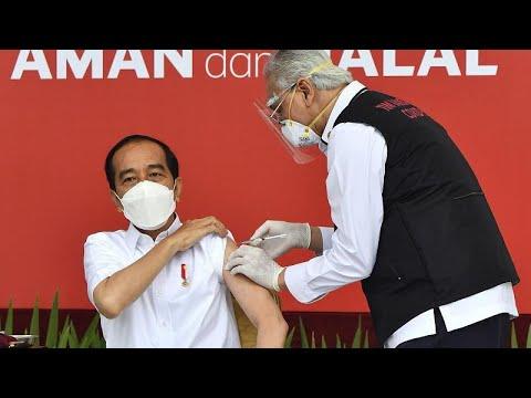 Халяльные вакцины: где