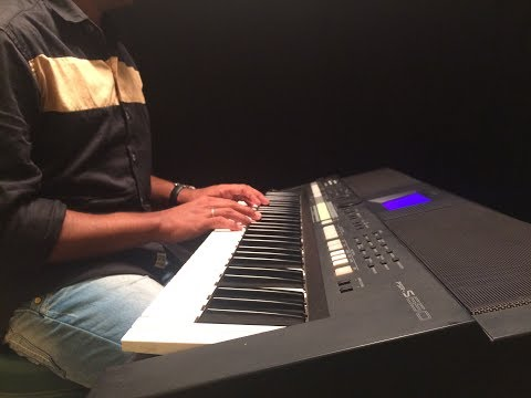 PUNNAGAI MANNAN THEME - PIANO COVER(ILAYARAJA TRIBUTE)