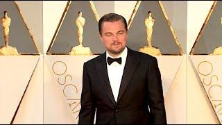 Oscar Nominations 2020: Leonardo DiCaprio, Renée Zellweger, Tom Hanks and More