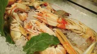 日系旅行会社マックスハーベストのイタリア~ミラノのレストランRistorante Il Faro(リストランテ・イル・ファーロ)~