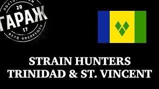 Strain Hunters Trinidad & st  Vincent expedition русский перевод и озвучка Гараж
