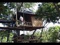 Temega Tree House Bali # New Destination in Karangasem, Bali