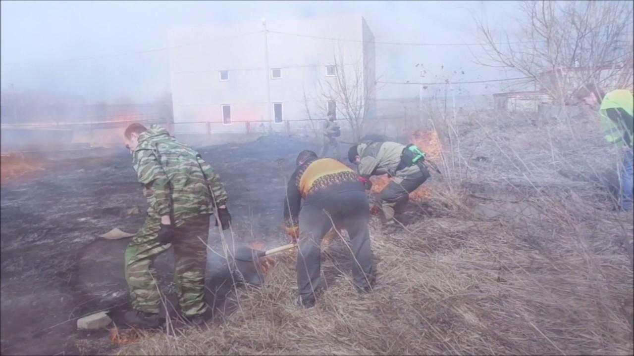 Погода с.мостовское варгашинского района курганской области
