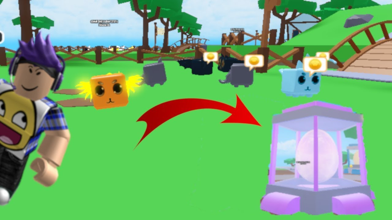 How to PLAY PET RANCH SIMULATOR In ROBLOX! Easy Tutorial/Guide for NEW  PLAYERS! Roblox Tutorial