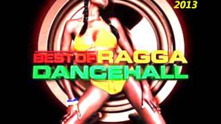 DANCEHALL 2013 MIX PREVIEW!!!!!! DJ FOFO-JAH