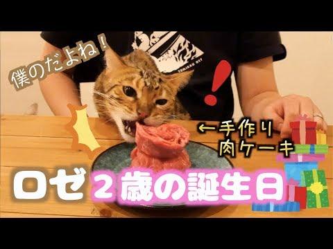 ロゼ2歳の誕生日に肉ケーキ作ってお祝いしたよ!! 2019/2/26