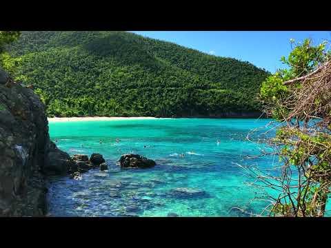 You Must Visit Trunk Bay US Virgin Islands National Park -  St. John USVI : Ep.15