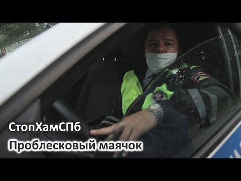 СтопХамСПб - Проблесковый