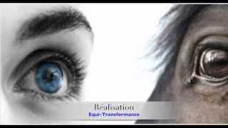 Equi-Transformance: Intelligence émotionnelle appliquée au management