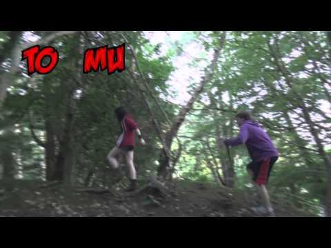 "Death Medical - ""Cardiac Forest"" | MetalSucks"