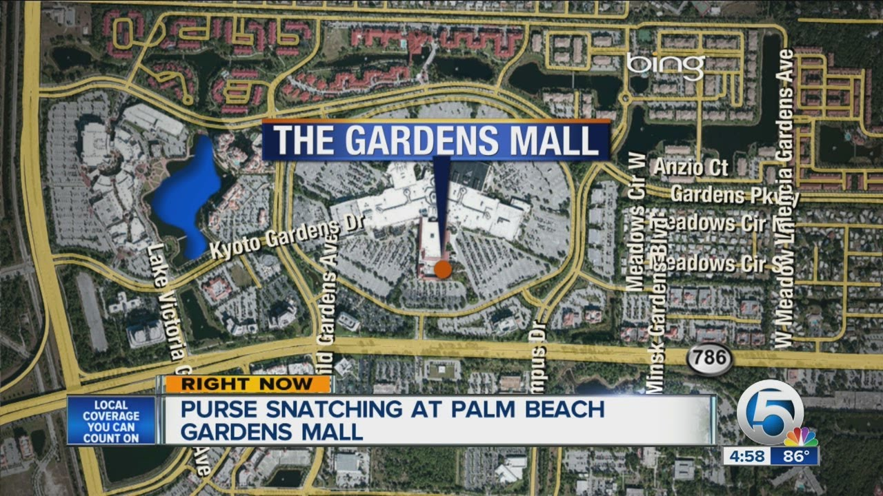 Purse Snatching At Palm Beach Gardens Mall Youtube