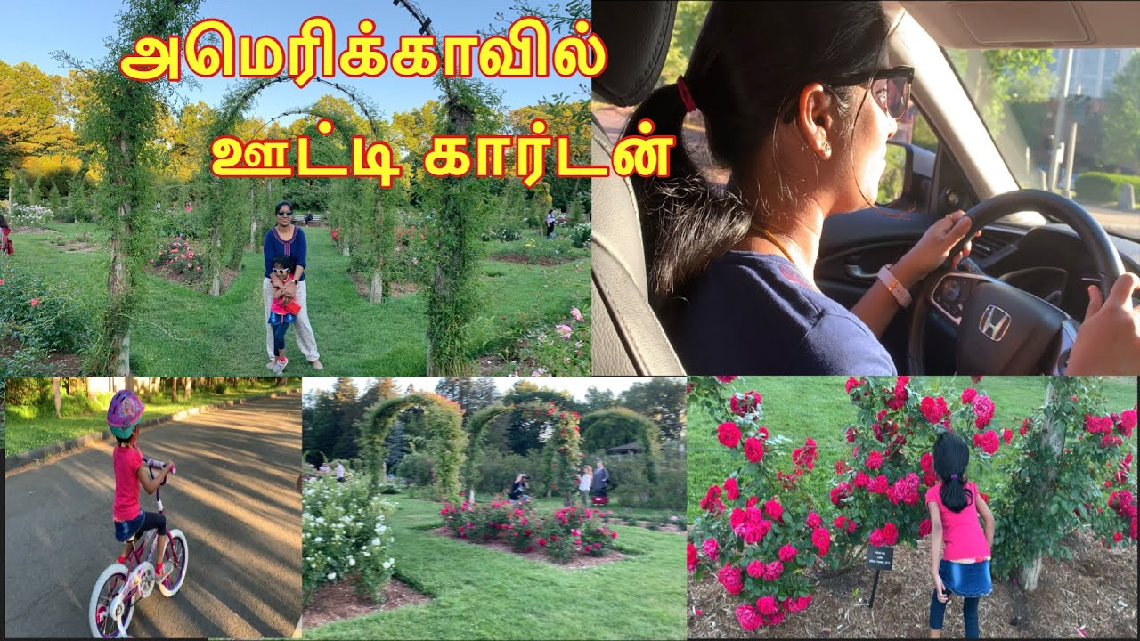 Lockdown positive vibes | ரோஸ் கார்டன் | Travel vlog | Summer time Park decoration | USA tamil vlog|
