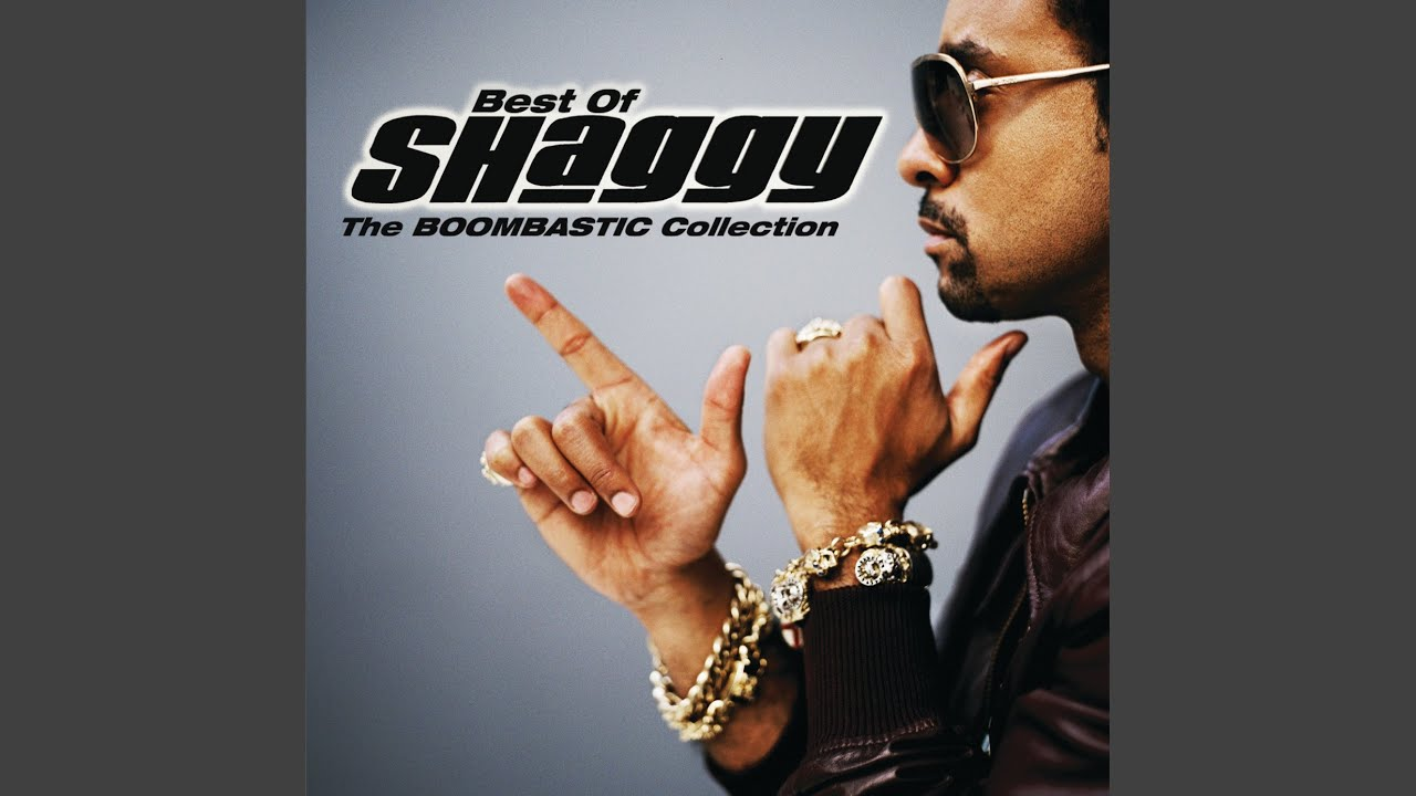 19 Surprising Things That Sting And Shaggy Have In Common | uDiscover
