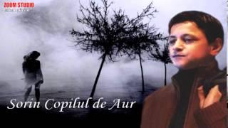 SORIN COPILUL DE AUR - NU AS RENUNTA LA TINE, ZOOM STUDIO