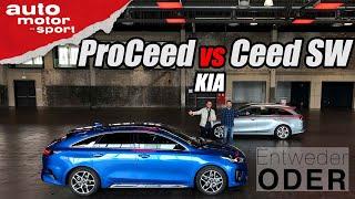 Kia ProCeed vs Ceed Sportswagon | Entweder ODER | (Vergleich/Review) auto motor und sport