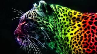 Rainbow Tiger Wallpaper