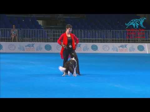 FCI Dog dance World Championship 2016 – Freestyle final  - Monika Ballerini and Breeze (Switzerland)