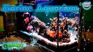Морской Аквариум своими руками 4K